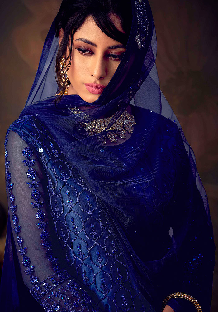 Blue Embroidered Net Sharara Suit