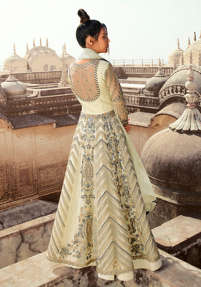 Light Grey Embroidered Lehenga Anarkali